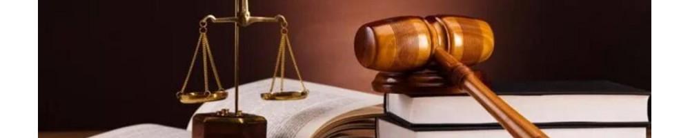 Comisión Apuntes Derecho (Xing Lu)